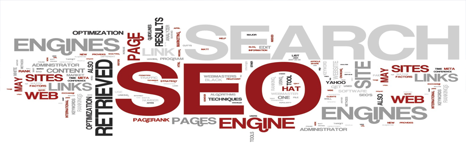 Search Engine Optimization For Starters: Understanding The Basics